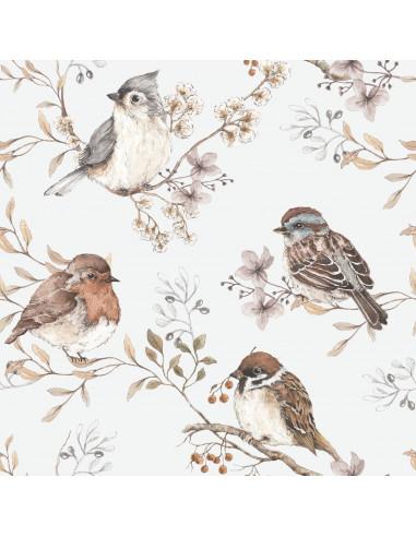 Papel pintado para pared Pájaros