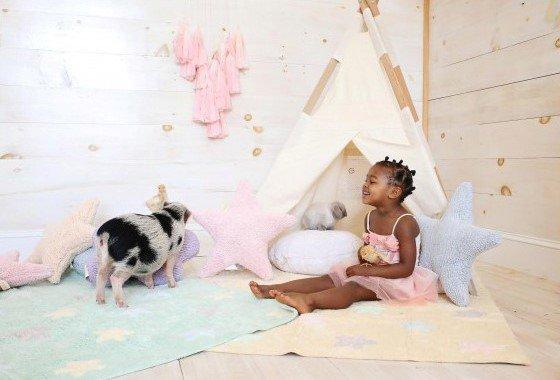 animales en casa con alfombras lavables